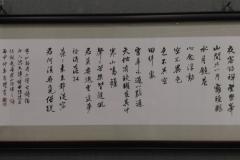 IMAG2893